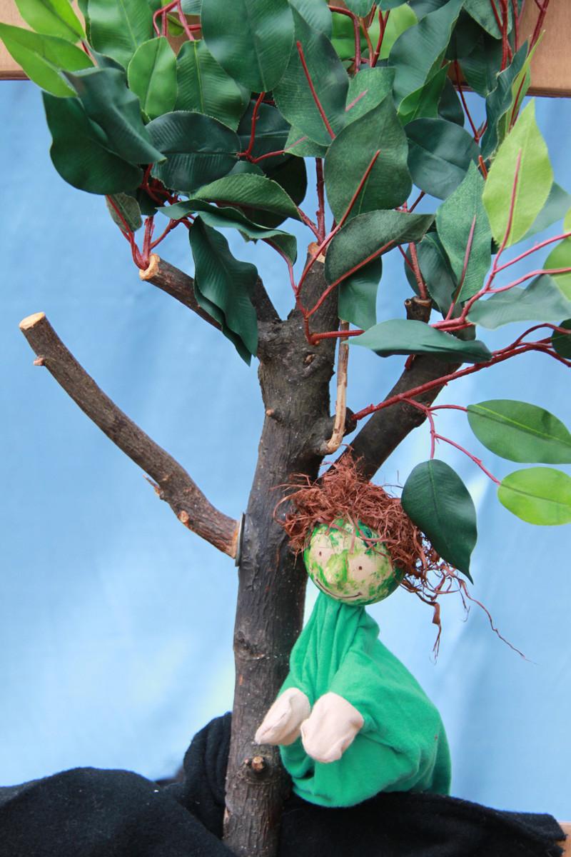 Waldfex, der Bewohner dieses Baumes