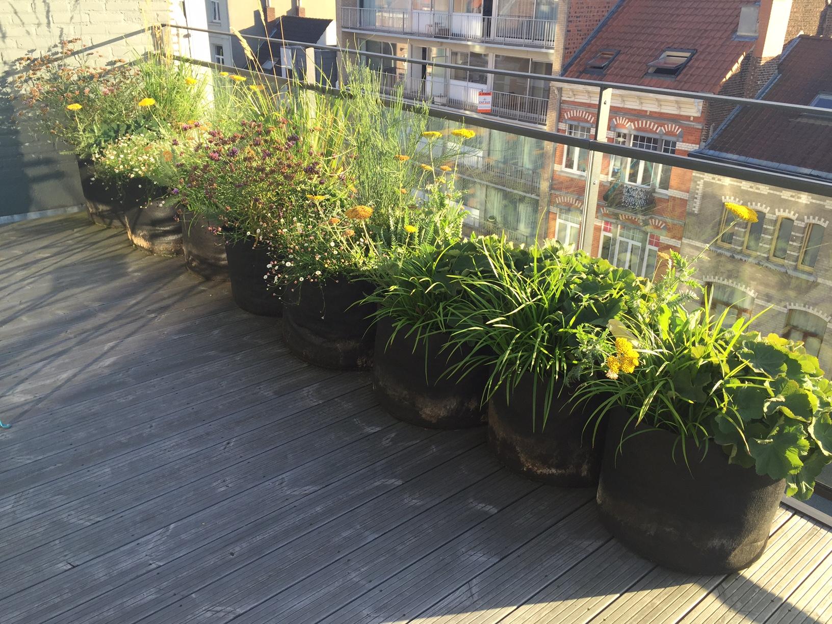 Terrasse 30m2 - Conception & réalisation . Amenagement jardin Bruxelles