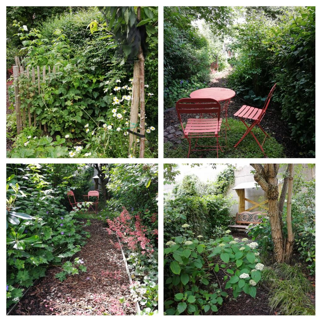 Jardin de ville 120m2 - Agroforesterie urbaine / +1an - Photos des clients pour me remercier. Aménagement jardin Bruxelles.