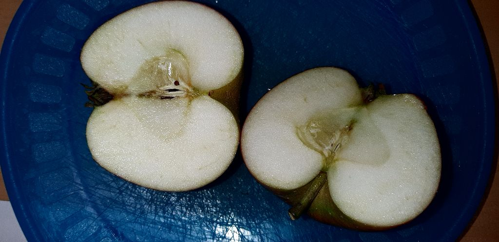 Wie sieht der Apfel aus?