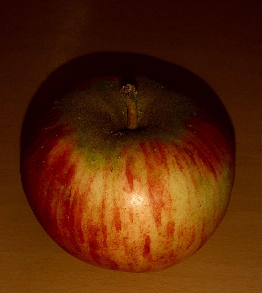 Wie kommt der Apfel an den Baum?
