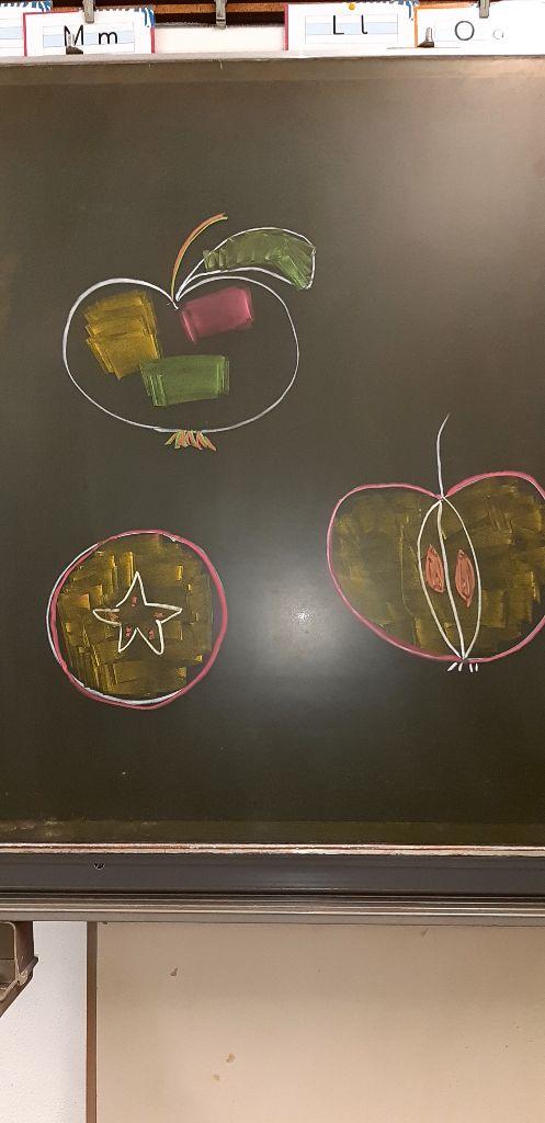 So sehen die Schale, das Fruchtfleisch, das Kerngehäuse und die Kerne aus.