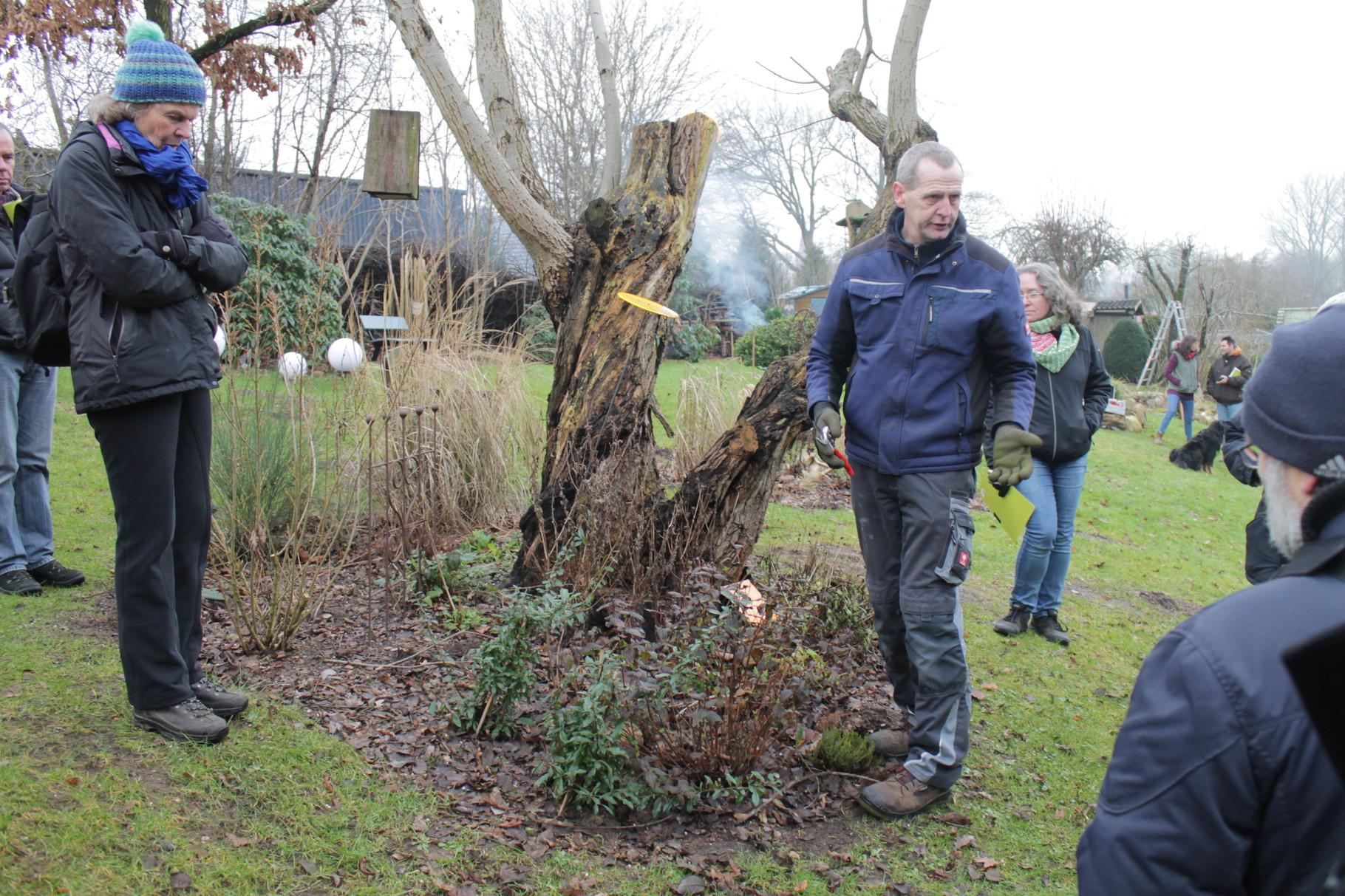 """""""Stauden richtig runterschneiden"""" gibt Herr Hennings vor. Das hätte nicht jeder Gartenfreund von uns gemacht ..."""