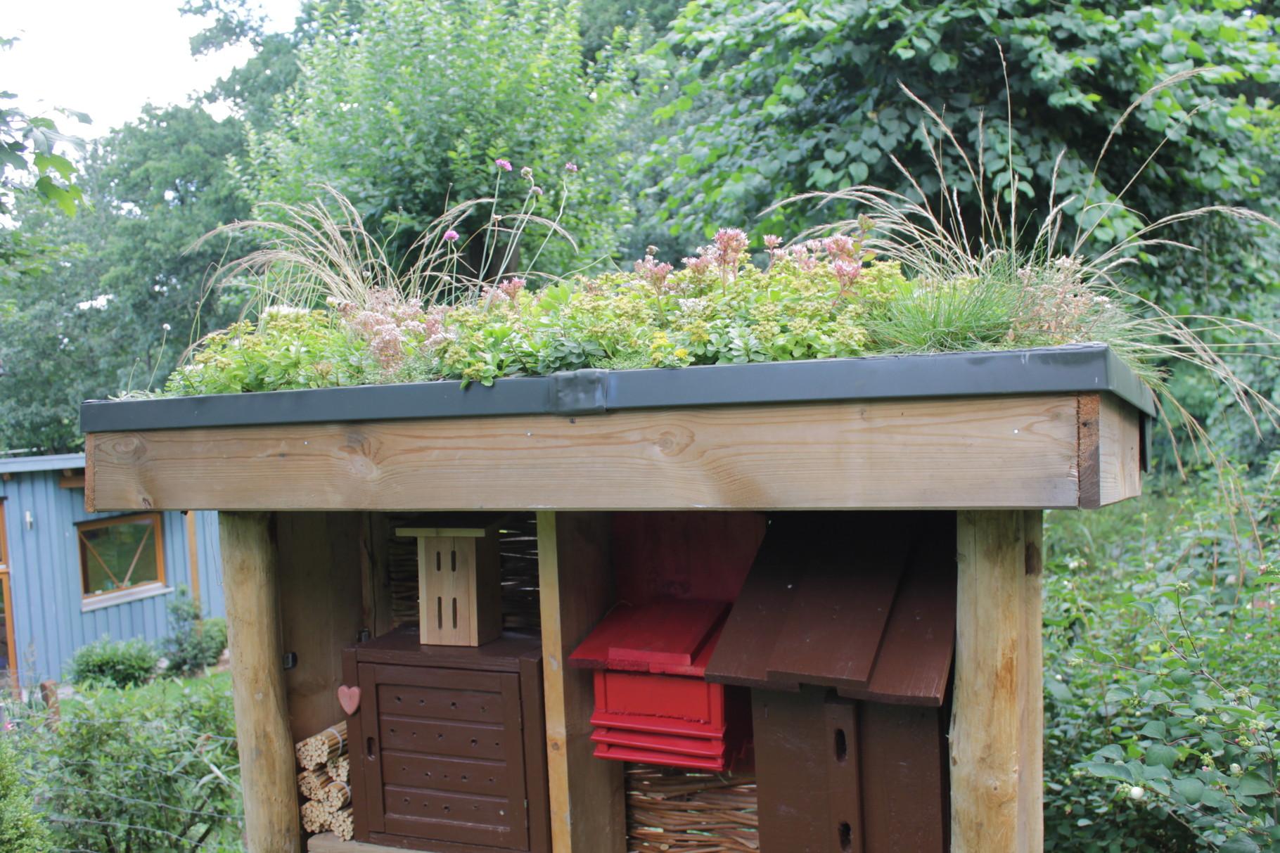 Insektenhotel nach Kräuter Park Stolpe Vorbild