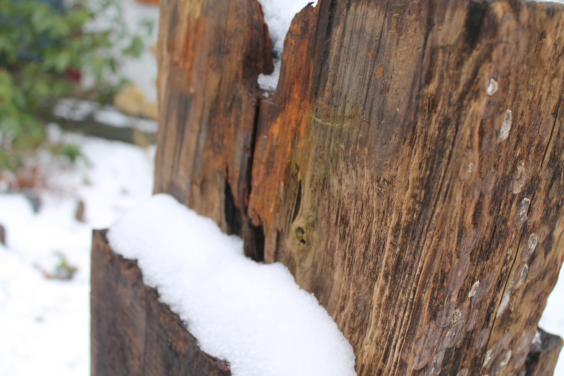 KöstelGarten  im Winterzauber
