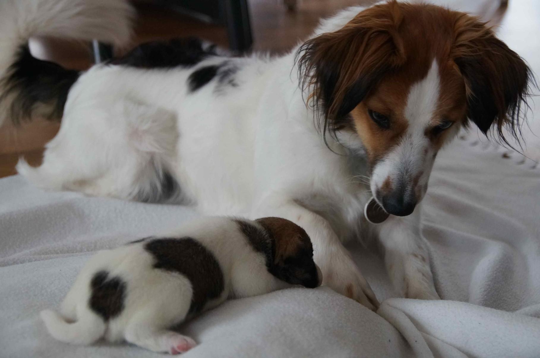 Cody mit seiner großen Schwester Benaja