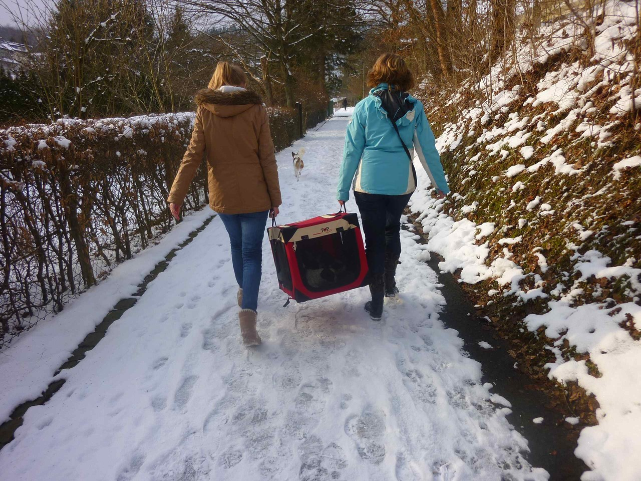 auf dem Weg in den Schnee...
