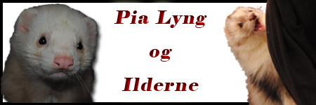 Pia Lyng