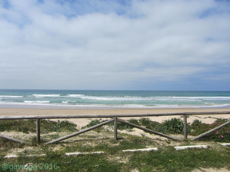 Strand Los Lances vom WoMo aus