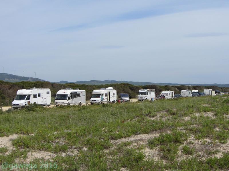 Wohnmobile am Strand von los Lances