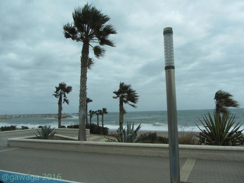 Uferpromenade in Carboneras, die Palmen biegen sich im Wind