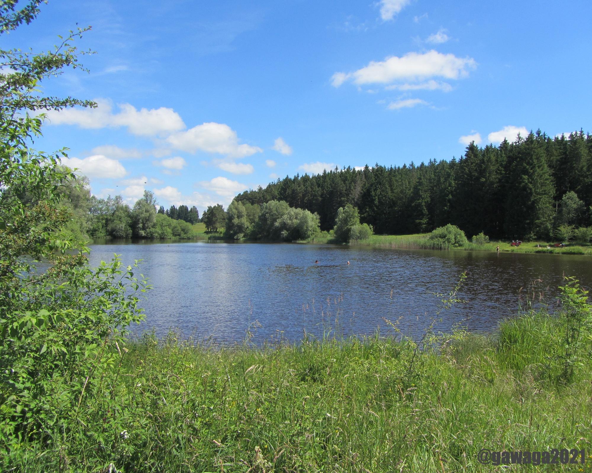 ein Spaziergang zum Baderwäldlesee, ein Naturbadesee mit moorhaltigem Wasser