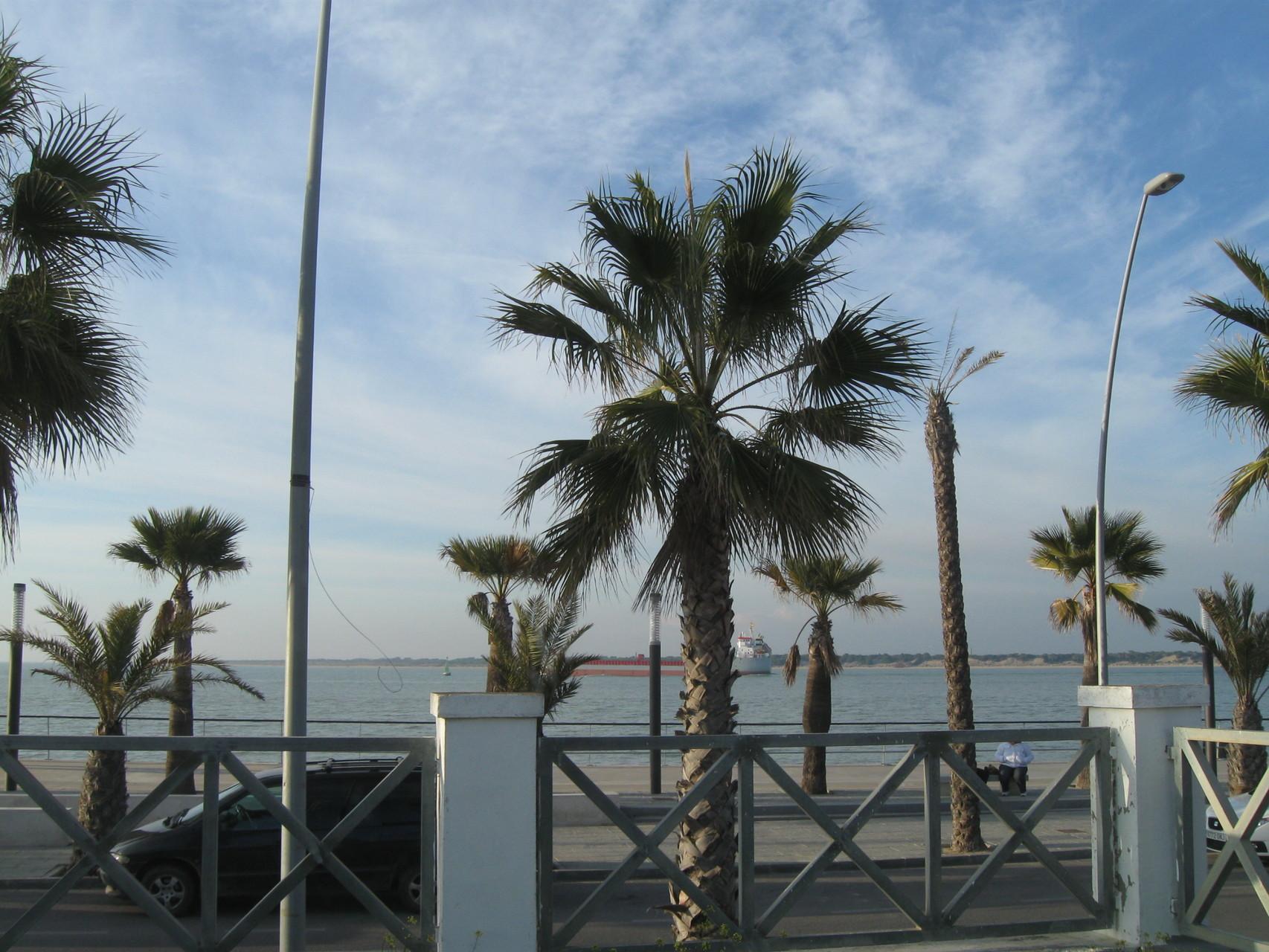 Blick vom Stellplatz zum Meer