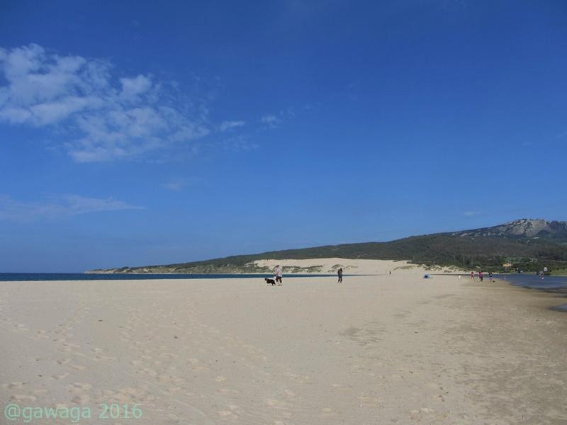Strand vom Campingplatz mit Blick auf die Wanderdüne