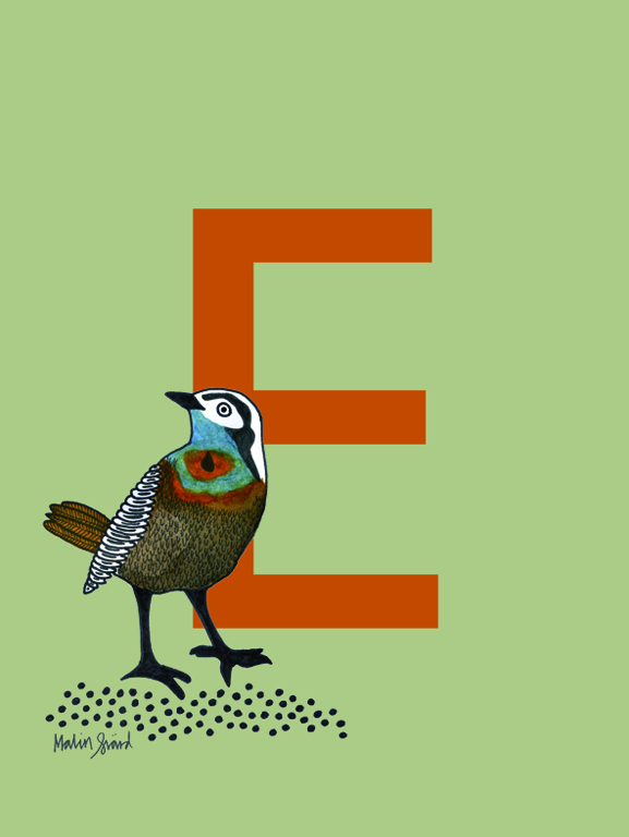 Alphabet Print E with bird