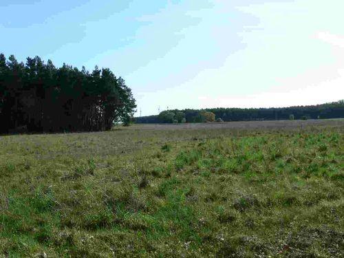 Feld und Wald bei Herzberg
