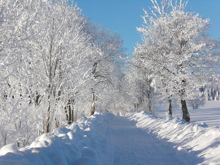 Poppenreuther Berg bei Mähring im Winter