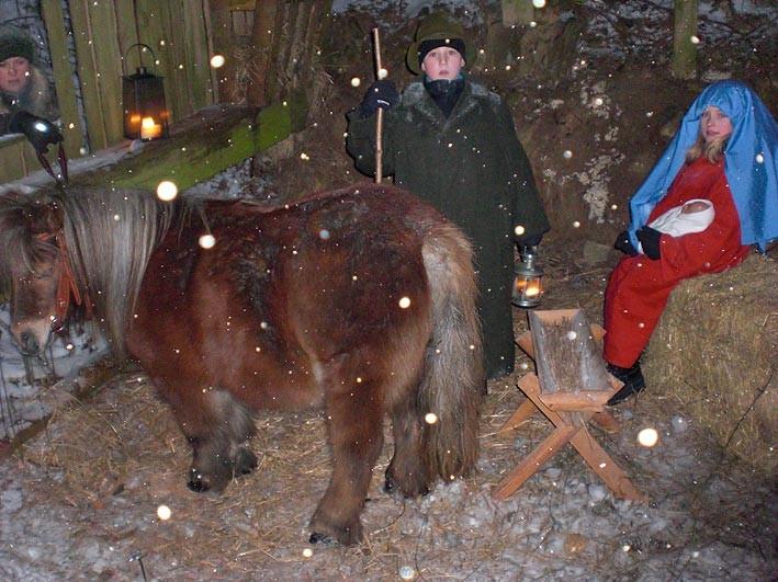 Waldweihnacht in Mähring