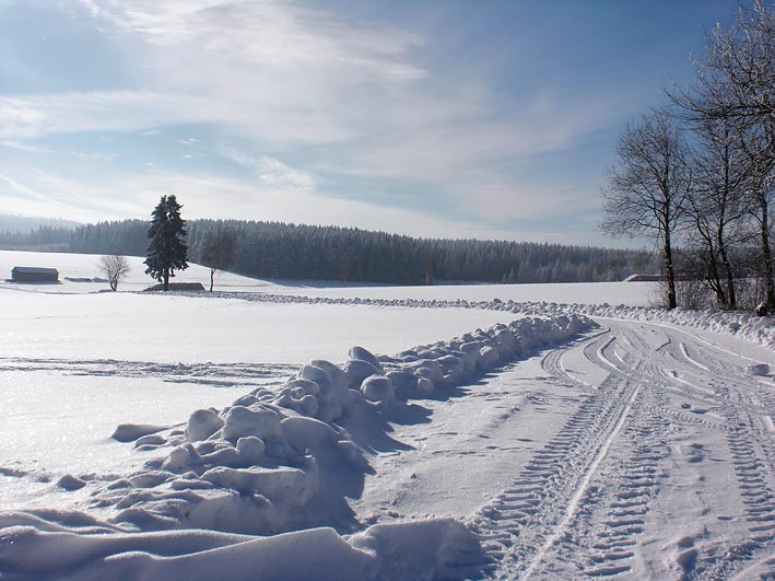 Winterwandern bei Mähring