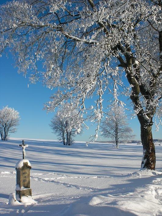 herrliche winterliche Landschaft