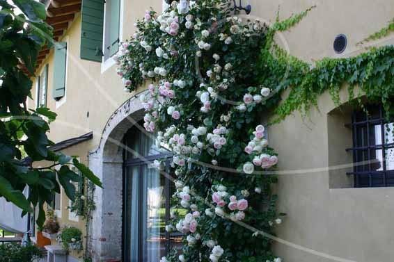 Residential - Giardino Privato