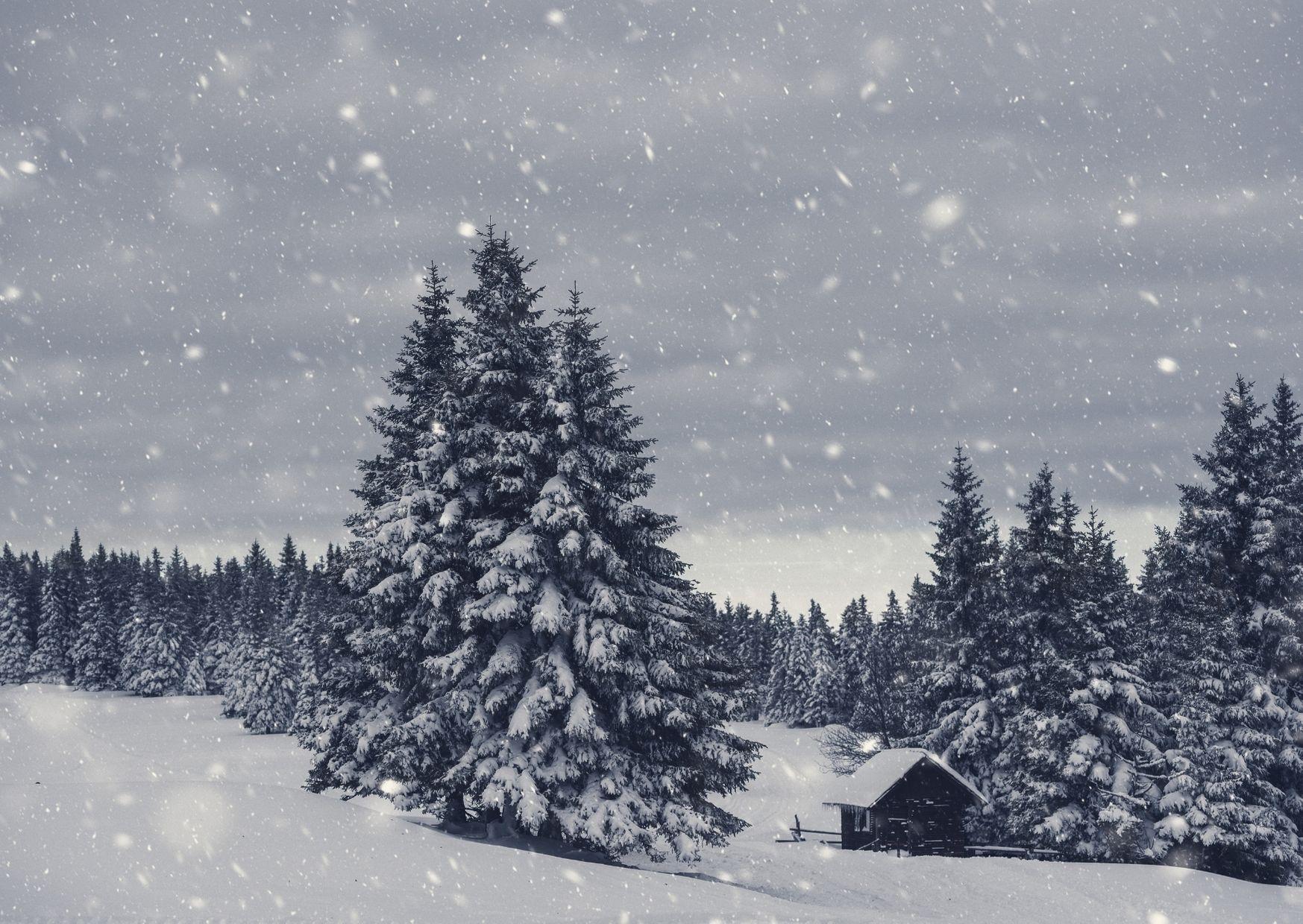「冬の過ごし方」実践中です。