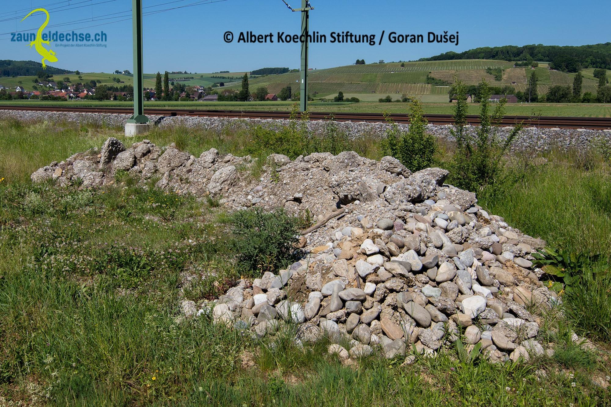 Gelungenes Beispiel für einen aus Bollensteinen und Nagelfluh kombinierten Steinhaufen. Ortstypisches Material verwenden!