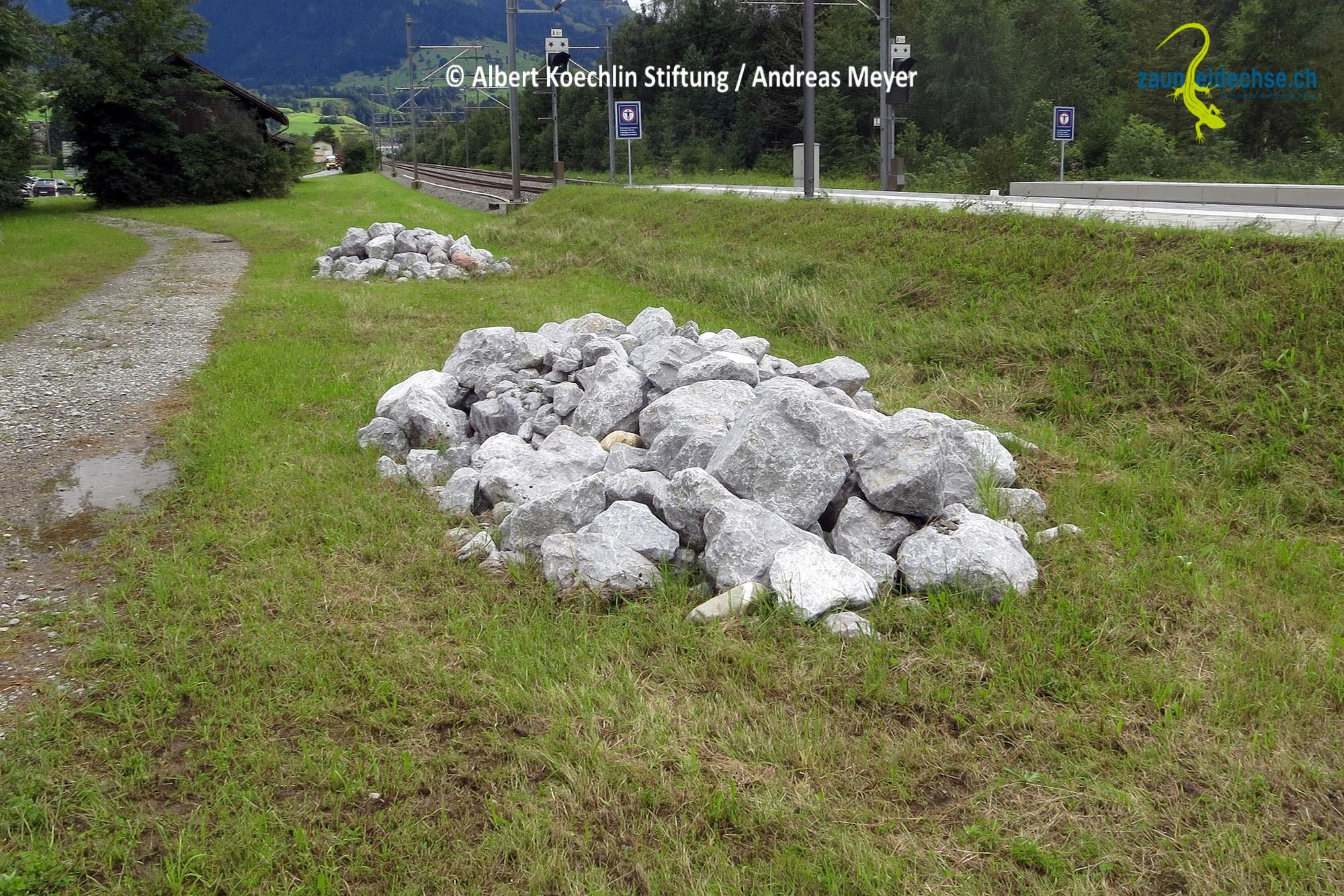 Diesen Steinhaufen fehlt ein Altgras- oder Krautsaum, und auch die weitere Umgebung ist zu strukturarm, um einen attraktiven Lebensraum zu bilden. Hier werden sich kaum Eidechsen ansiedeln.