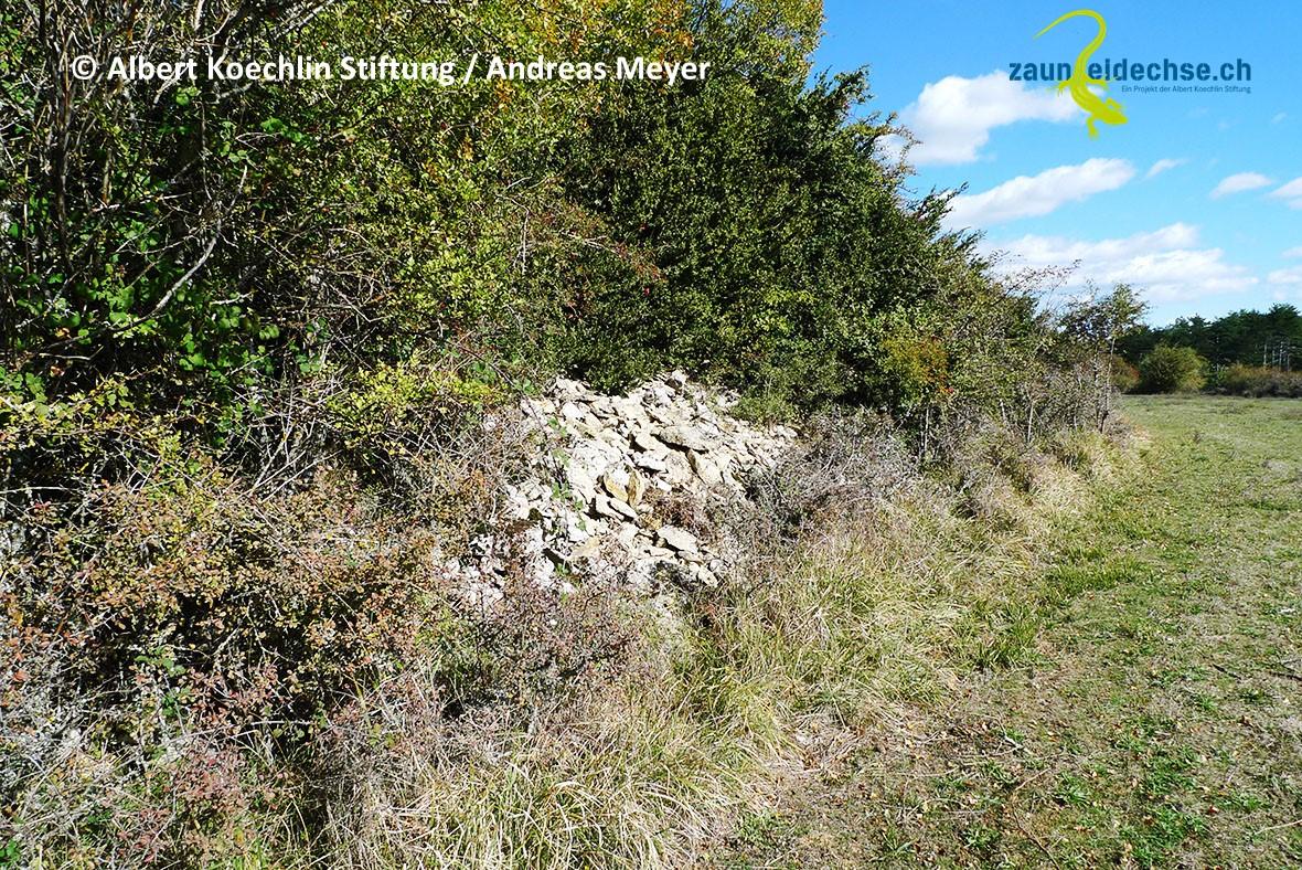Waldränder, Hecken oder Ackersäume lassen sich durch Steinhaufen aufwerten.