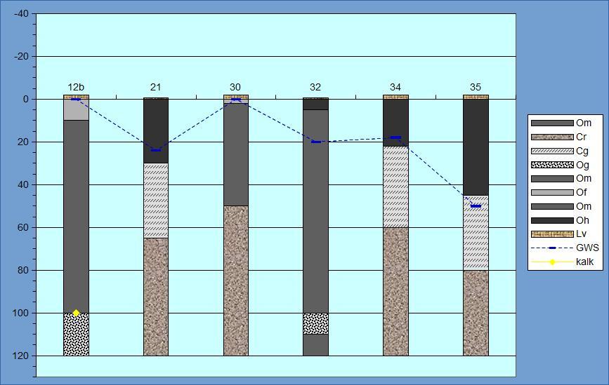 Profielen van de bodem in typisch Elzenbroekbos (vegetatietype B5) in de Zumpe.