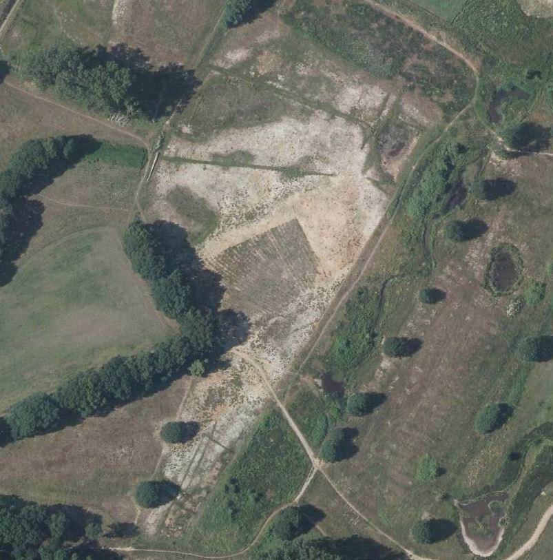 In 2016 geplagde delen van Groenendaal/Ruige Horst. Er zijn structuren zichtbaar geworden; sloten, vennen en landbouwstructuren (luchtfoto Gemeente Doetinchem).