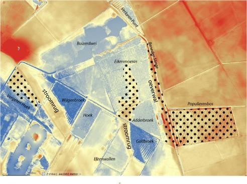 hoogtekaart met terrestrische bossen, Eiken-Haagbeukenbos