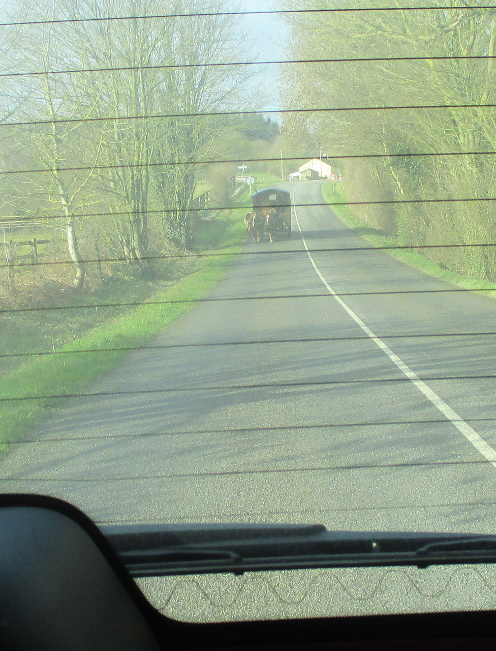 Sur le chemin du retour... Pas eu le temps de saisir suffisamment tôt mon appareil photo... Petit clin d'oeil pour notre Gitantroubadour...