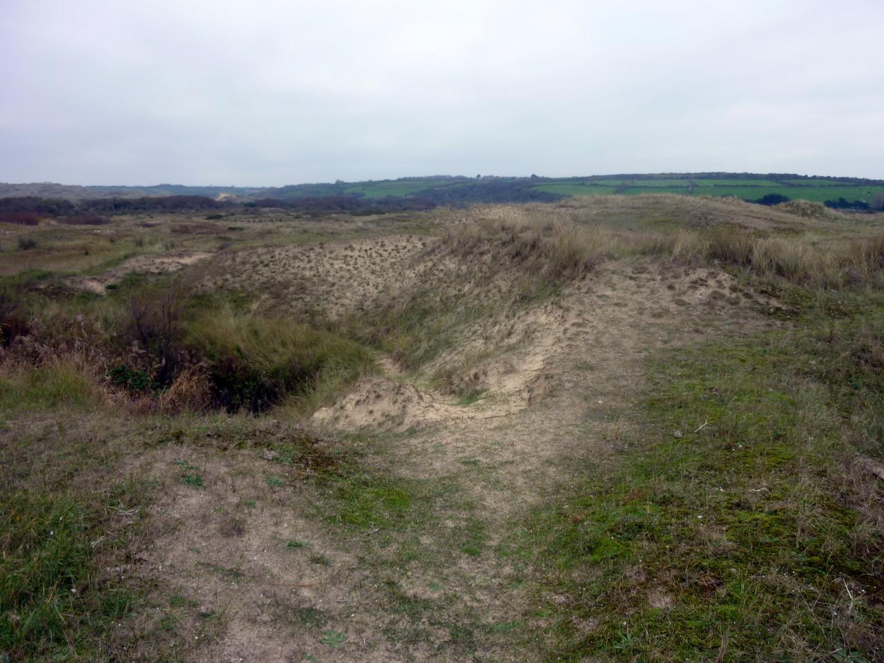 Les dunes de Siouville