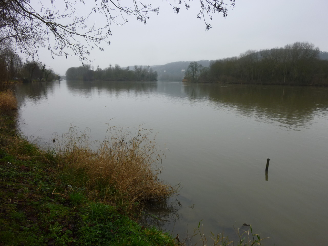 Promenade le long de la Seine, vers Amfreville sous les Monts