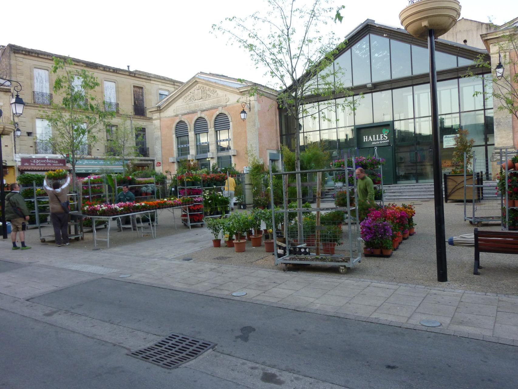 Vauvert et son marché aux fleurs ( notre photo a été retenue et est en photo de couverture de la page Facebook de la ville