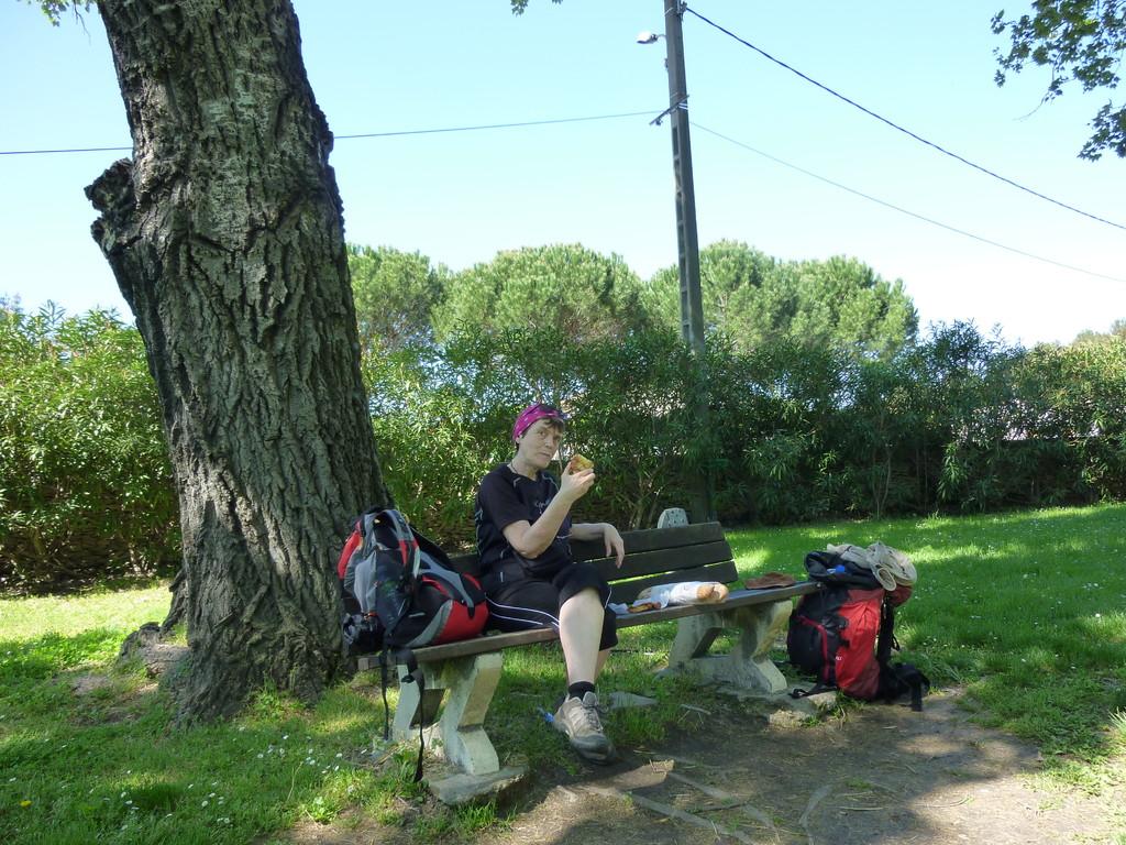 En allant vers Gallargues le Montueux
