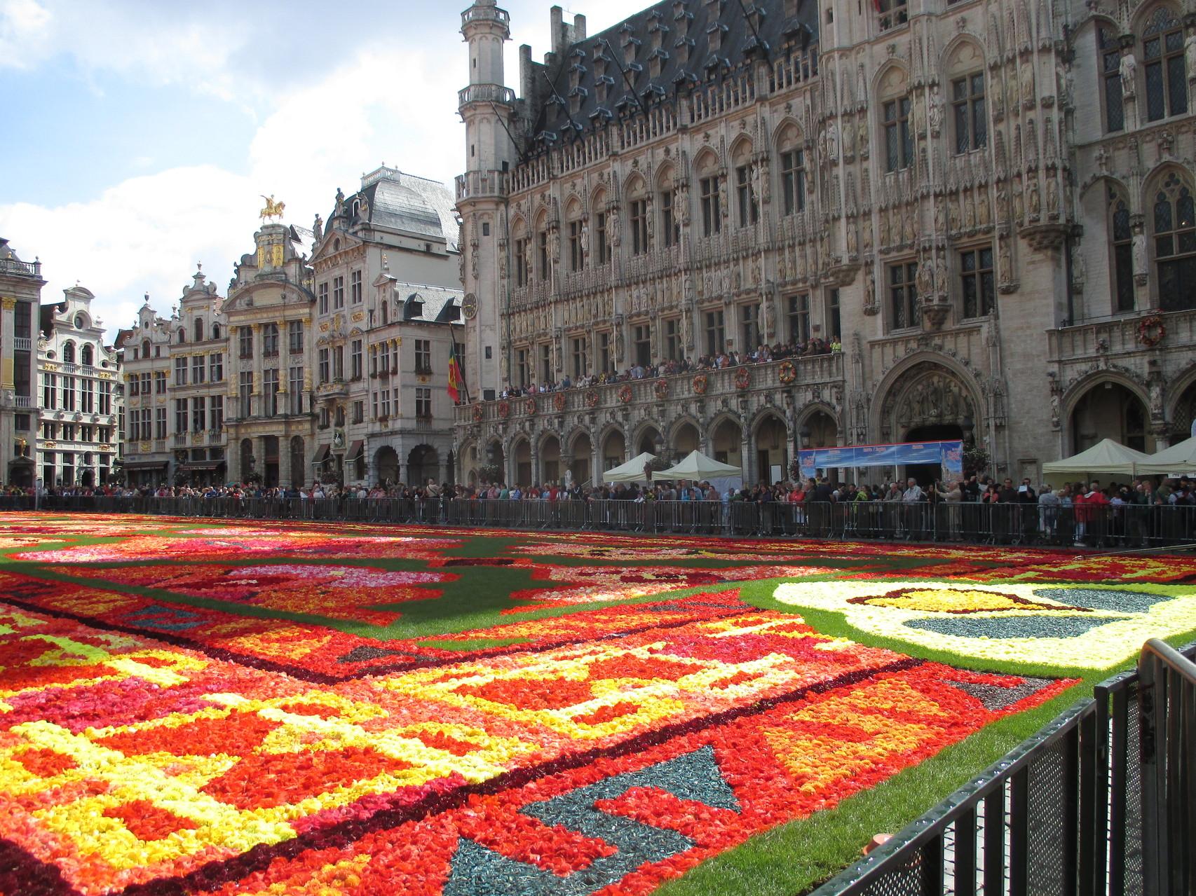 La grand place et son tapis de fleurs naturelles, bégonias surtout