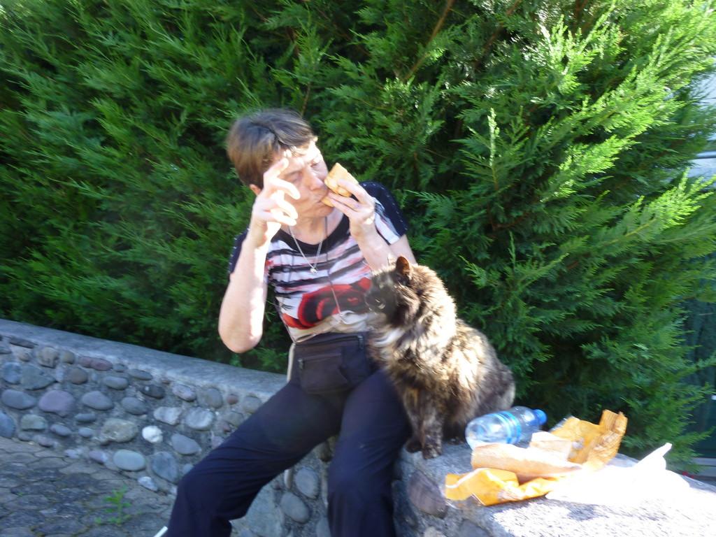 Minou mangerait bien tout mon pain au chocolat...Il n'avait pas trop le sens du partage !