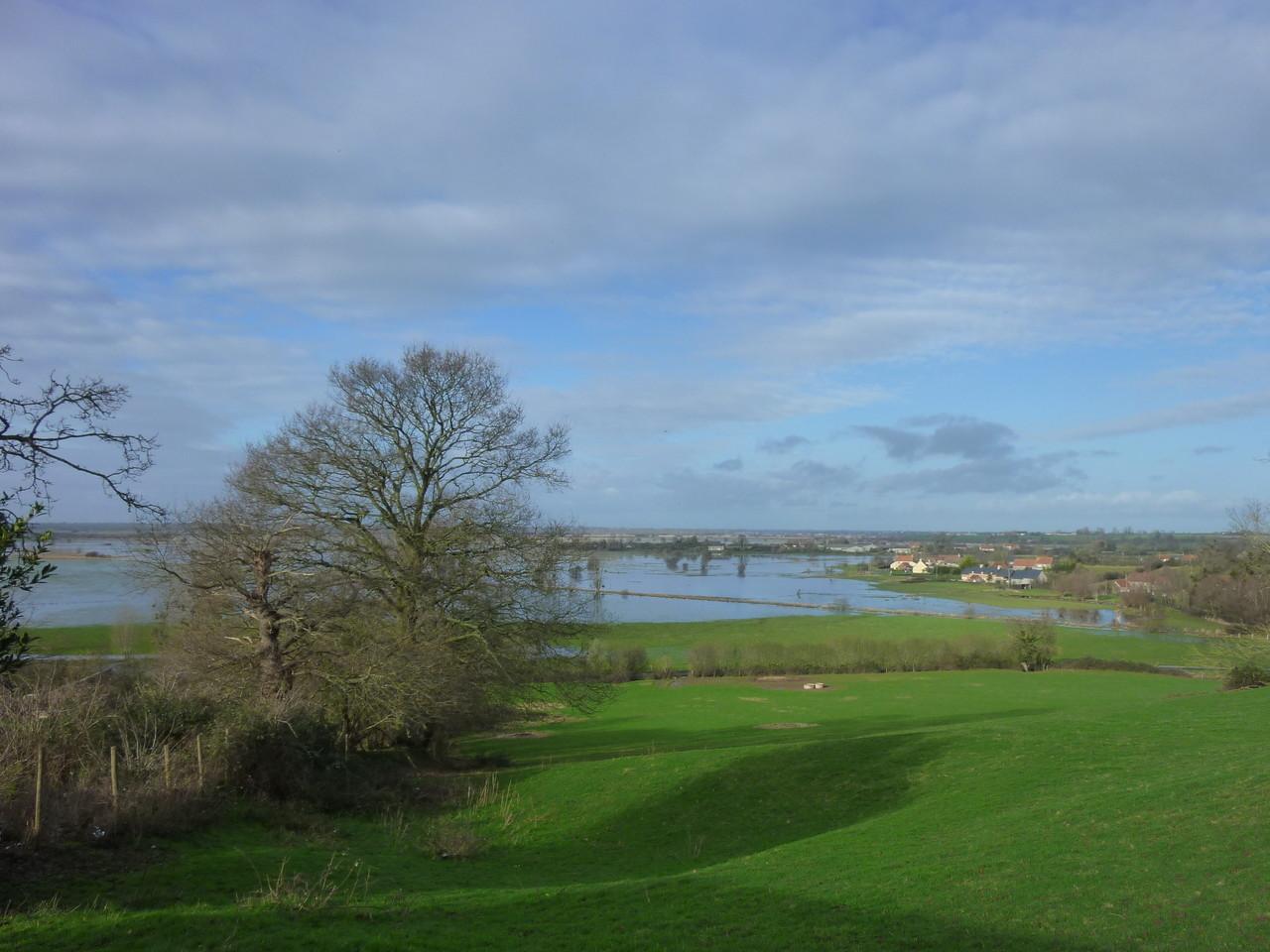 Les marais blancs du Cotentin, près de Carentan, au niveau de Graignes