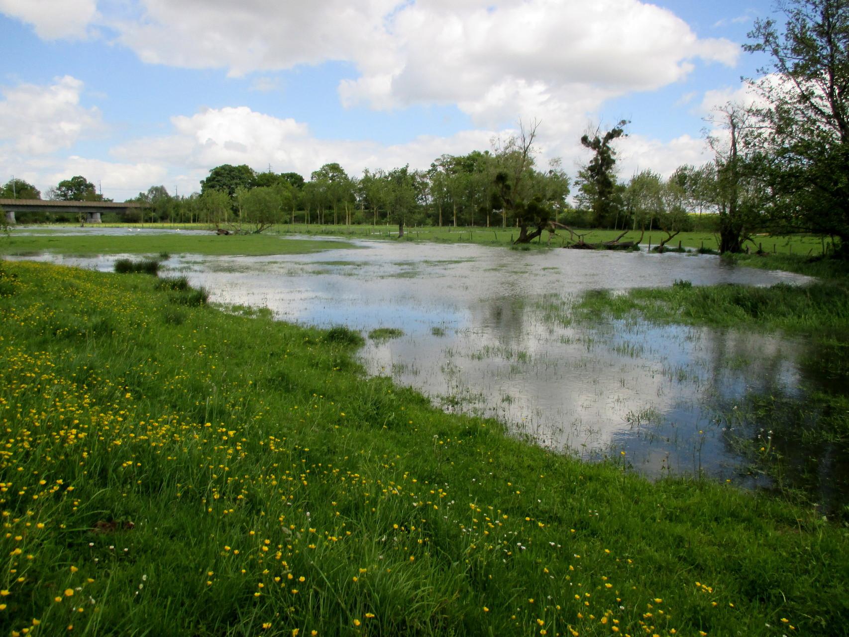 Le Loir déborde et va sérieusement nous compliquer la vie durant quelques jours