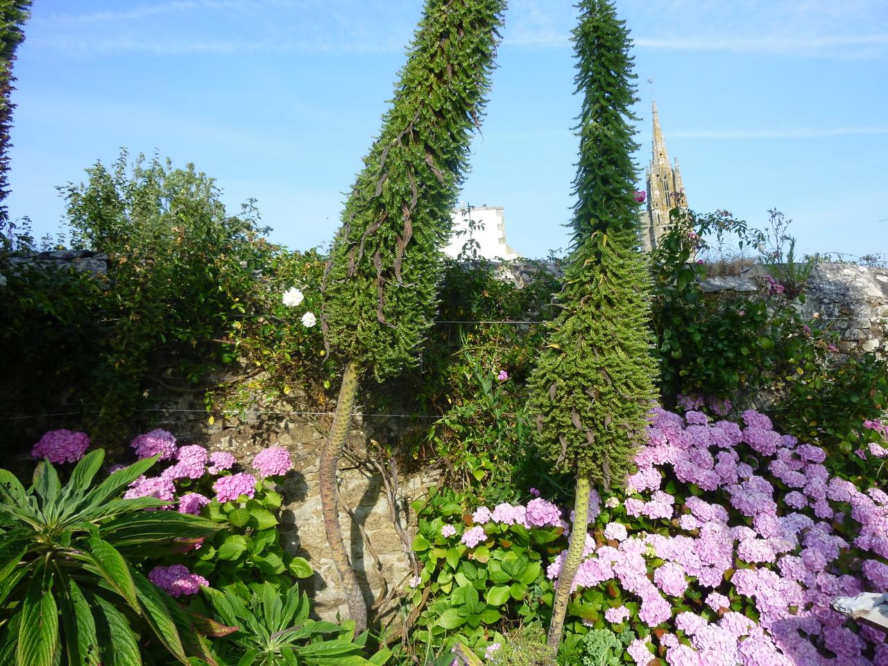 Le jardin de Nathalie, notre chambre d'hôtes