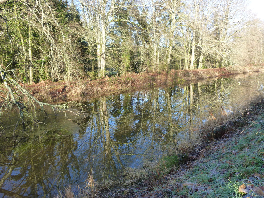 Le long du canal.