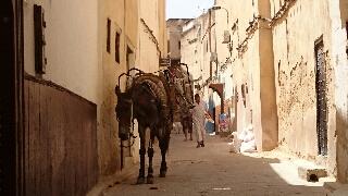 モロッコ・フェズ旧市街。私、この1200年前につくられた歴史ある壁に惚れたんです♡ 青い街シャウエン在住Mikaのブログ
