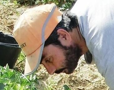 Laurent Cogoluègnes, Produzent von Melonen