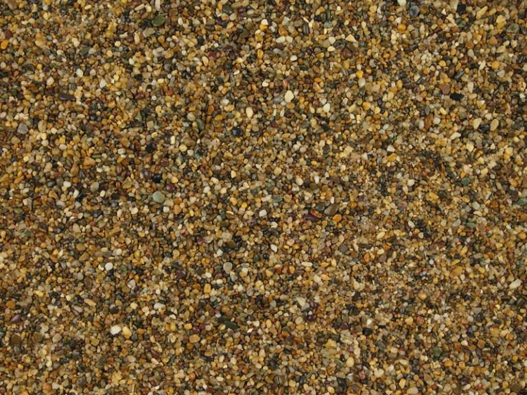 Golden Pea 1-3mm