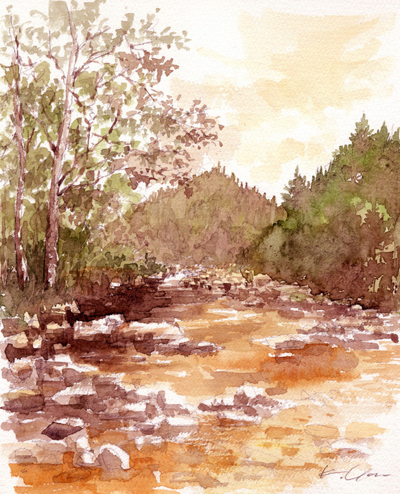 stream in evening