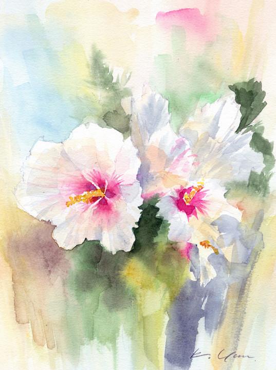 槿 rose of sharon