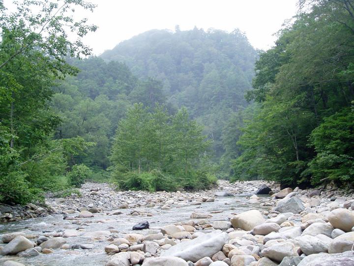 Au 2003