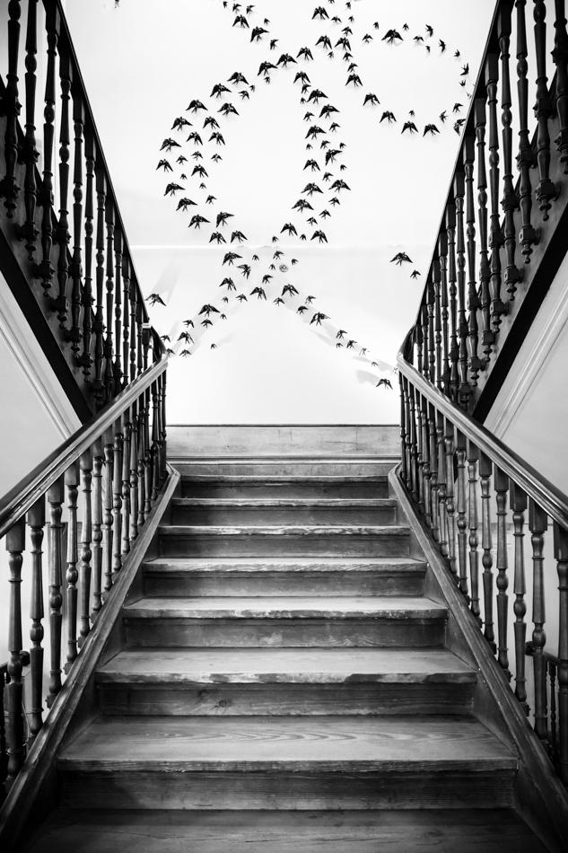 Porto Staircase
